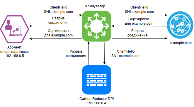 HTTPS (DNS, SNI, IP, Proxy) - 2  Документация Carbon Reductor DPI X